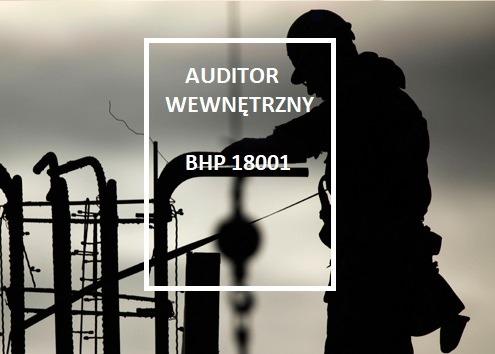 AP10033118909-construction-worker